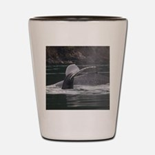 whales Shot Glass