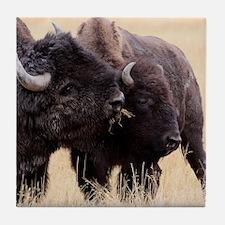 bison friendship Tile Coaster