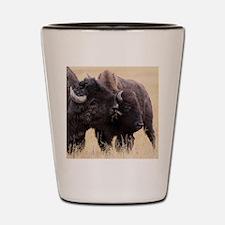 bison friendship Shot Glass