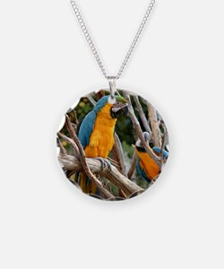 Blue And Gold Macaw Necklace Circle Charm