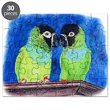 Nandays Puzzle