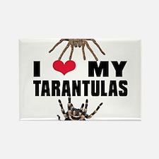 Cute Tarantula Rectangle Magnet