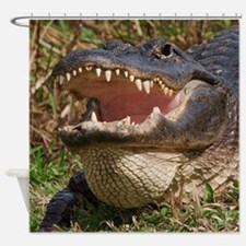 alligator with teeth showing Shower Curtain