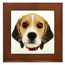 Beagle Face 004 Framed Tile