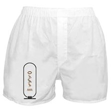 Ramon in Color Boxer Shorts