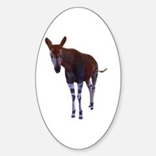 okapi 3 Oval Decal