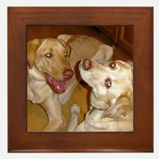 "2 Yellow Labs ""In Love"" Framed Tile"
