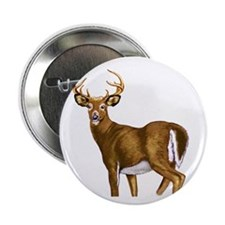 "White Tail Deer Buck 2.25"" Button"
