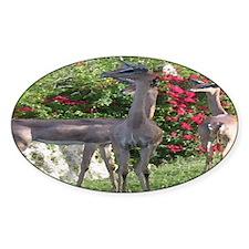 Gerenuk Oval Decal