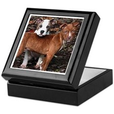 Pit Bull Terriers Keepsake Box