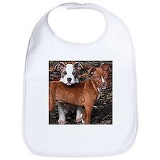 Pit Bull Terriers Bib