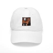 Pit Bull Terriers Baseball Cap
