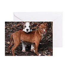 Pit Bull Terriers Greeting Cards (Pk of 10)