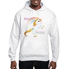 Brony Pride Jumper Hoody