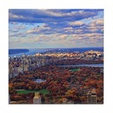 Central park new york city Drink Coasters