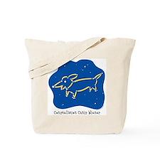Dachshund constellation Tote Bag