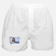 Gray Jay 9739 Boxer Shorts