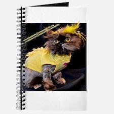 Funny Freida%2c the throw away kitty Journal