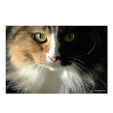 The Cat's Eyes Postcards (Package of 8)