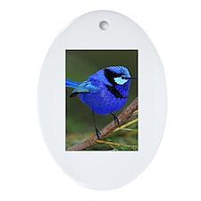 Blue Wren Oval Ornament