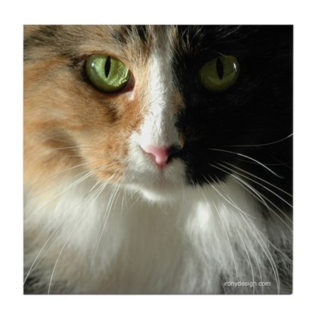 The Cat's Eyes Tile Coaster
