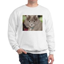 Pi the Cat Sweatshirt