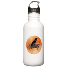Cat Raven Moon Water Bottle