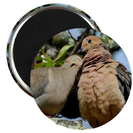 Love doves peace and joy 4 Magnets