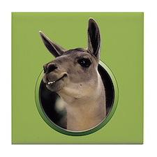 Smiling Llama Tile Coaster