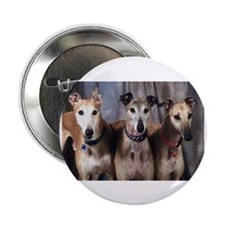 "Greyhounds Three 2.25"" Button (100 pack)"