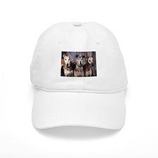 Greyhounds Three Baseball Cap