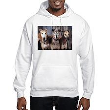 Greyhounds Three Hoodie