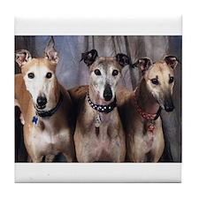 Greyhounds Three Tile Coaster