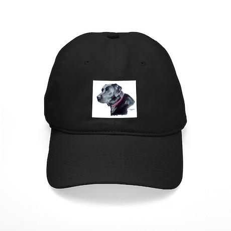 Hawke, Black Labrador Black Cap