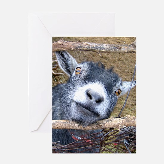 Give Us A Kiss! Greeting Cards