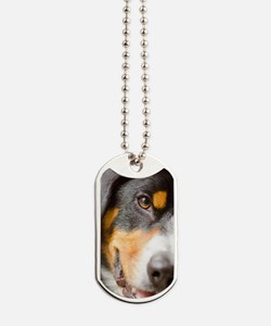 Entlebucher Mountain Dog - Dog Tags