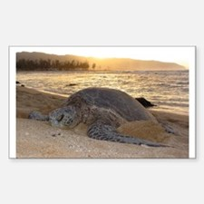 Honu at Sunset Decal