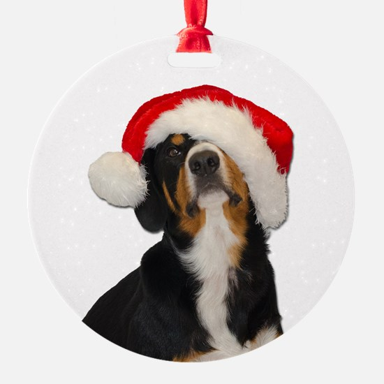 Dear SantaPaws, I can Explain Ornament