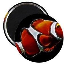 Orange Clownfish Tropical Clown Fish Magnets
