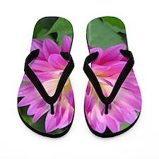 Purple Yellow Dahlia Flip Flops