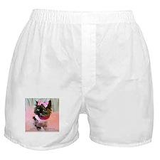 Freida, the throw away kitty Boxer Shorts