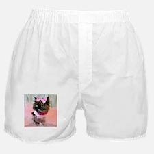 Cute Maine cat Boxer Shorts