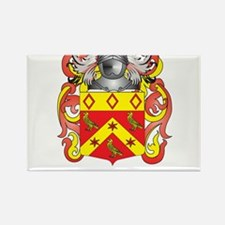Phin Coat of Arms (Family Crest) Magnets