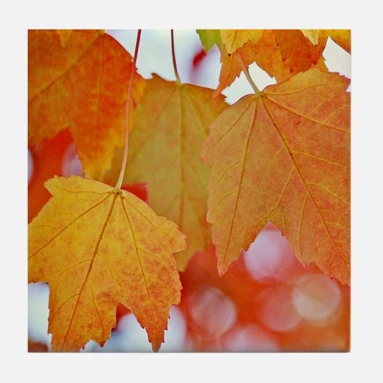Modern Fall Leaves Tile Coaster