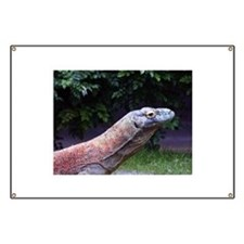 Monitor Lizard Banner