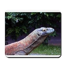 Monitor Lizard Mousepad