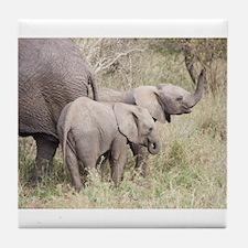 Two Baby Elephants Tile Coaster