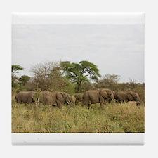 Herd of Elephants Tile Coaster