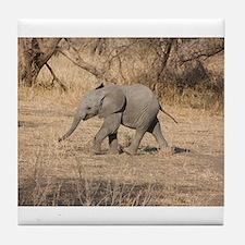 Baby Elephant Tile Coaster