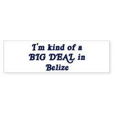 Big Deal in Belize Bumper Bumper Sticker